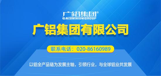 广铝集团有限公司